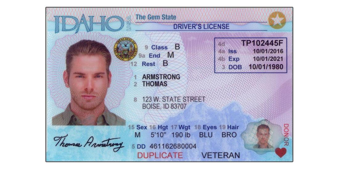 Idaho Driver's License
