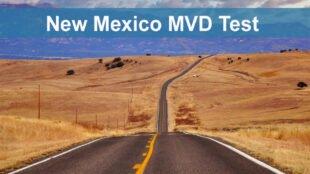 New Mexico MVD Test - Pierluigi D'Amelio