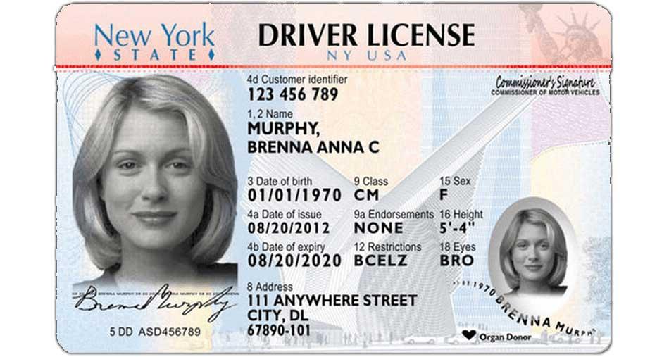New York State Driver License - Driver's Prep